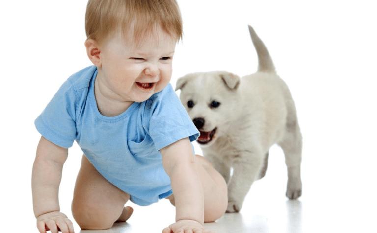 Copil mic și cățel jucându-se împreună.