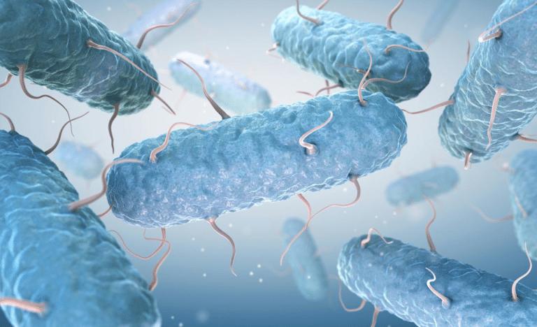 Micro-organisme albastre.