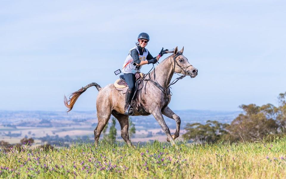 Femeie calare pe un cal gri.