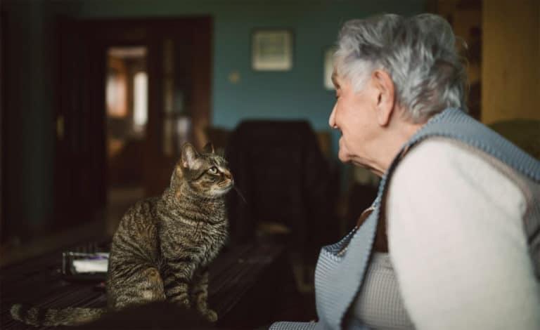 Femeie in varsta uitandu-se la o pisica.
