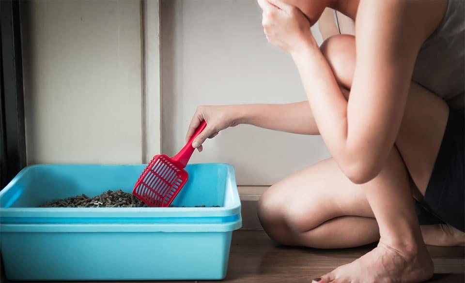 Fata facand curat intr-o litiera albastra si tinandu-se de nas.