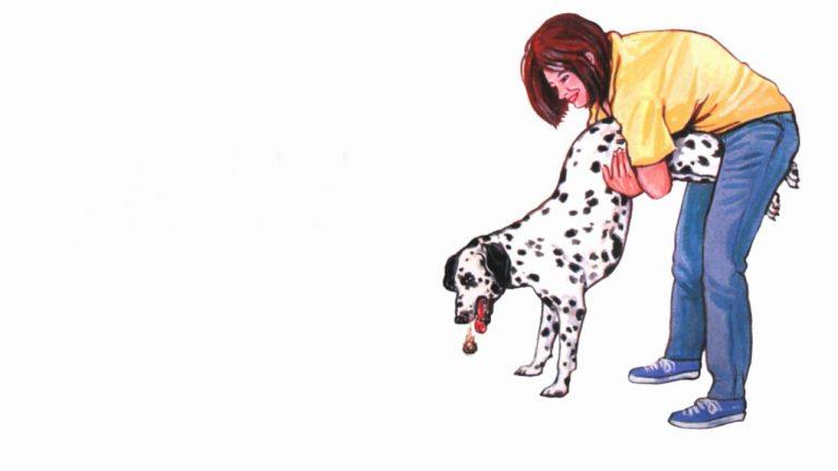 Desen cu o femeie aplicand manevra Heimlich unui caine.