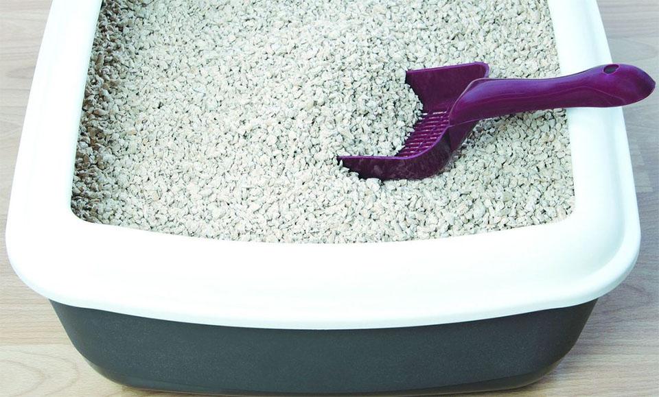 Litiera cu o lopetica de curatat in nisip.